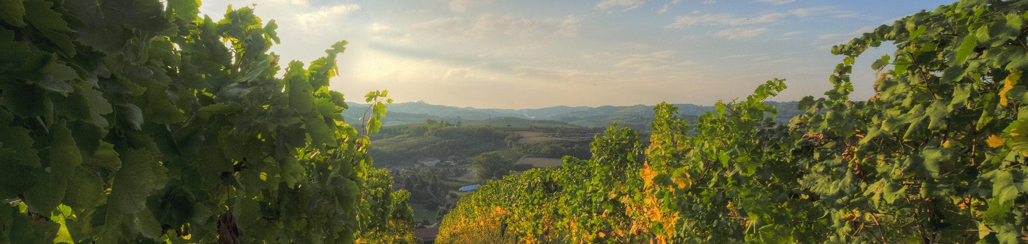 Affittacamere | Turismo in Piemonte